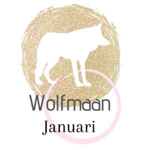 De naam van de volle maan in januari Wolfmaan.