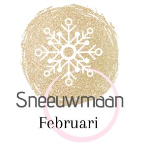 De naam van de volle maan in februari Sneeuwmaan.